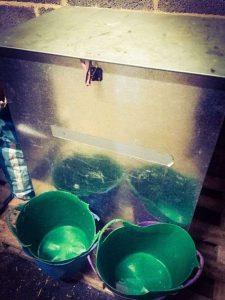 feed bin and buckets