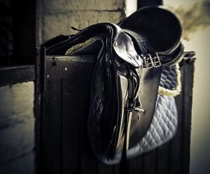 How to clean horse tack - daily cleaning