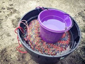 Horse care tips and tricks for feeding - weighing down soaked hay