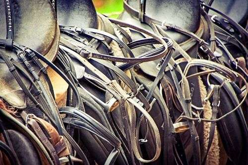 How to clean horse tack - saddles and bridles