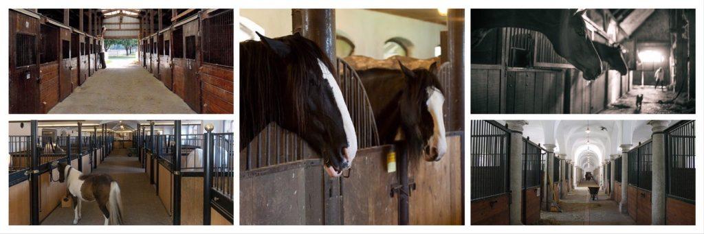 American Barn stables