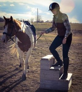 Horse Mounting Block