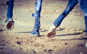 Riding Arena Sand Surface