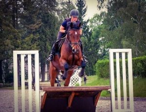 Arena Eventing Fence